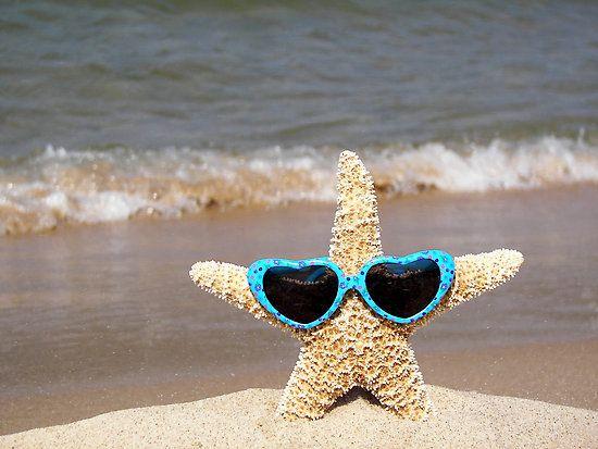 """Stylin' Starfish""  [Photographer *Maria Dryfhout*]  'h4d' 120818"