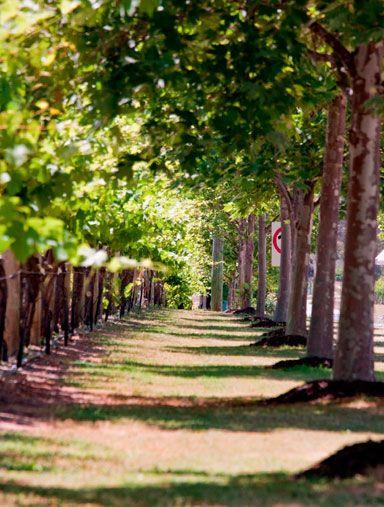 Lancaster Wines - Swan Valley - Perth Western Australia