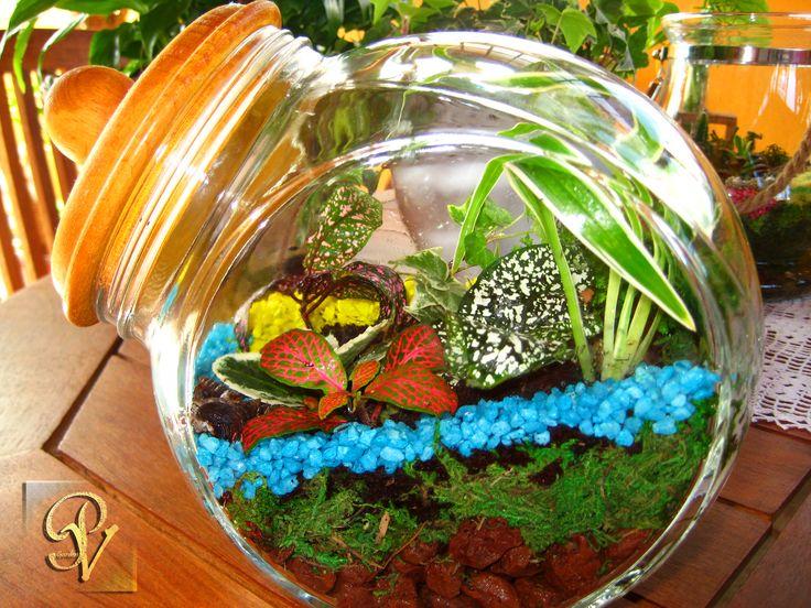 Oltre 1000 idee su giardini in miniatura su pinterest - Giardini in bottiglia ...