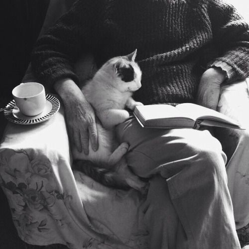 I wish my cat would snuggle like this but she would probably be sitting on the book or knocking the mug on the floor