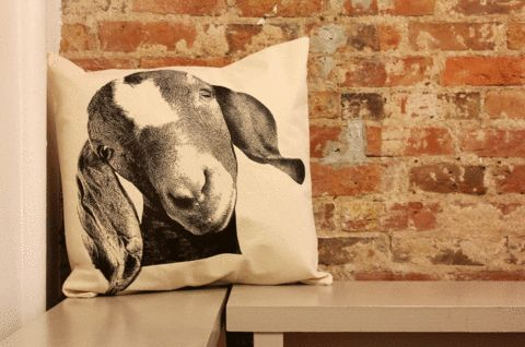 In a natural cotton with simple silk-screened imagery of a member of the animal kingdom, this throw pillow is an easy, neutral accent that doesn't take itself too seriously. Of course, everyone loves a goat big or small, but a regal buck or serious owl complement your couch just as well. The insert is removable for washing.
