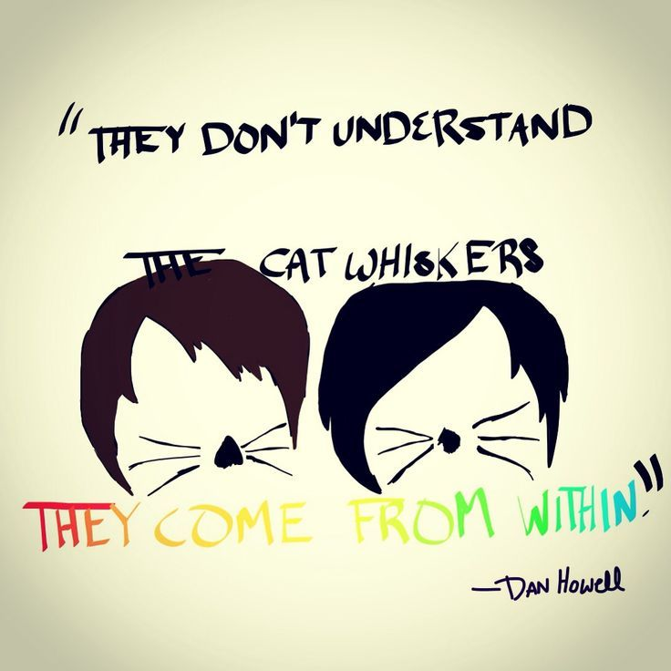 dan and phil quotes - Google Search