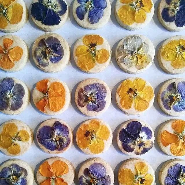 #cotito #cookies #flower