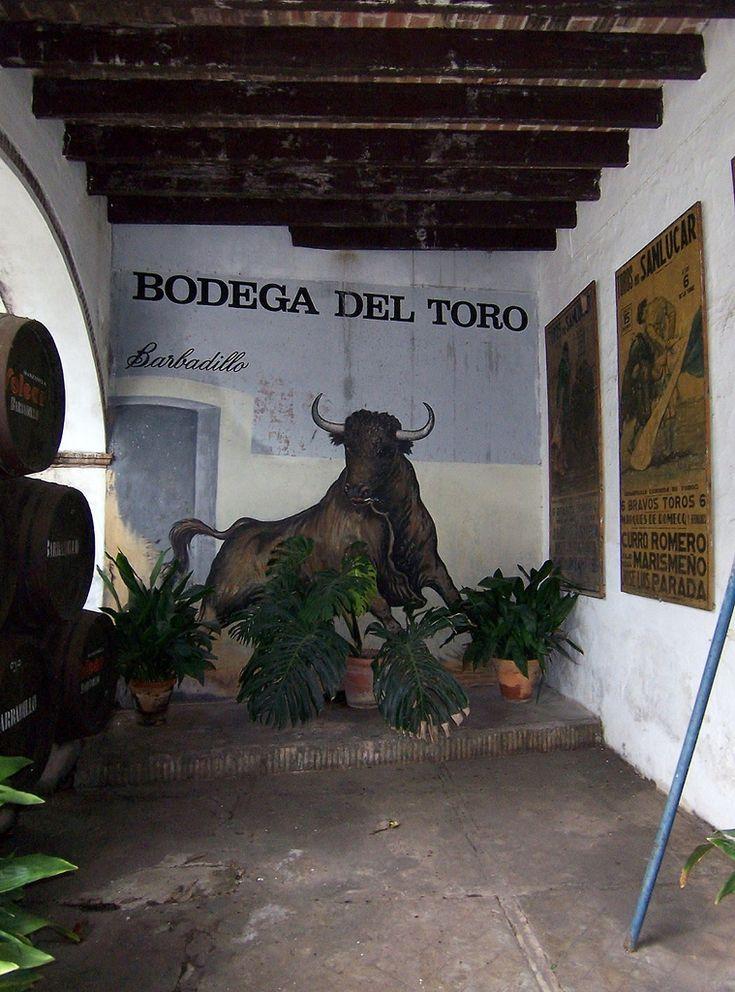 Bodega del toro de Barbadillo,Sanlúcar de Barrameda. | Cuando se hace alusión a las Bodegas Barbadillo hablamos de unas bodegas con casi doscientos años de antiguedad. Estas bodegas fueron fundadas concretamente en el año 1821 cuando Benigno Barbadillo y su primo Manuel López Barbadillo se instalaron en Sanlúcar de Barrameda tras veinte años de estancia en México. Los primeros pasos se dieron en la que hoy se denomina Bodega del Toro, precioso lugar ejemplo de la a...