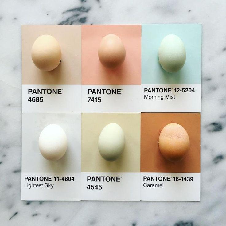 maneira que a designer Lucy Litman encontrou para trazer tranquilidade para os seus dias estressantes não poderia ter sido mais criativa: ela combina diversas cores encontradas na gastronomia com as cartelas de cores Pantone
