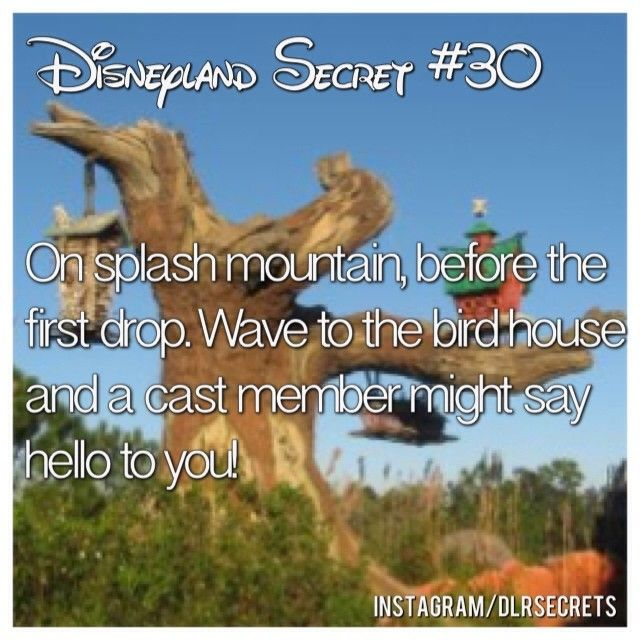 try it! it works! #Disneyland #dlrsecrets