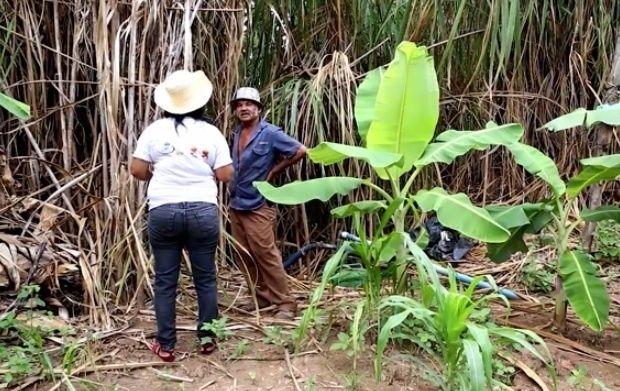 """FIM DO SUSTENTO NA PESCA - Às margens do rio Doce, agricultores temem que rejeitos de mineração que estão nas águas possam contaminar solo. """"Eles não mataram só os peixes. A esperança de muitas famílias morreu naquele momento junto com esse rio. Se continuar do jeito que está, eles vão matar muitas famílias de fome"""", diz Ivani Miranda de Faria, 49, presidente do Sindicato dos Trabalhadores e vereadora de Tumiritinga"""