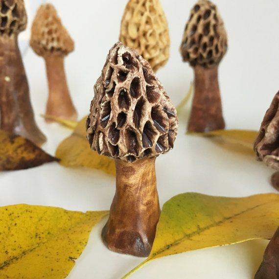 Ceramic Realistic Morel Mushrooms, Garden Art, Terrarium Decoration, Fungi, Fungus, by BeTheOcean
