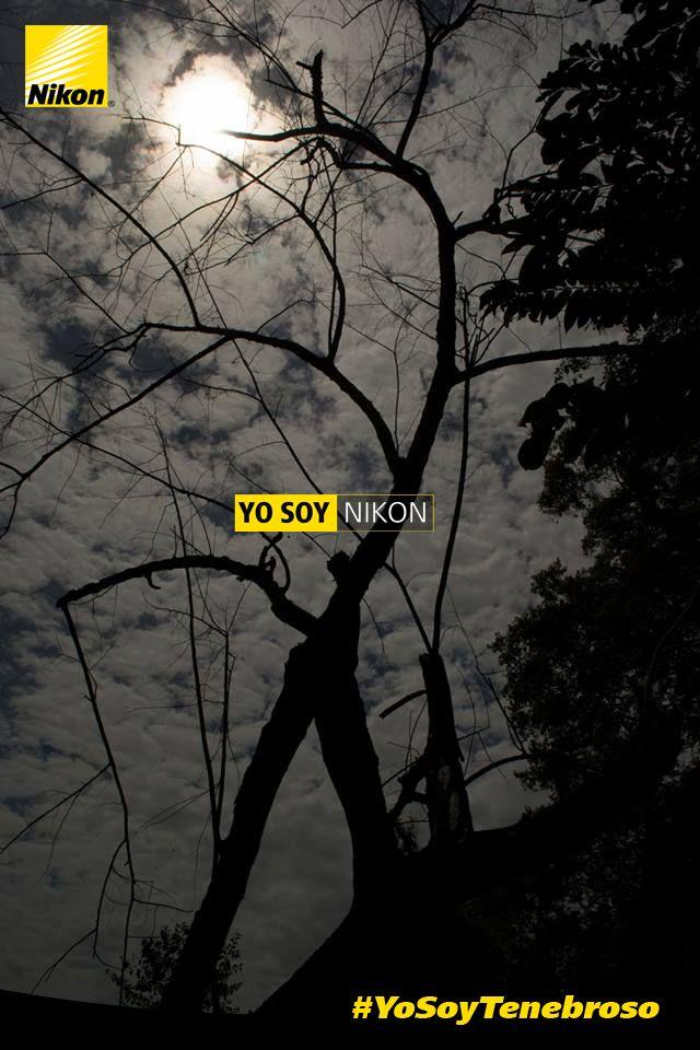 #YoSoyTenebroso, Fredie Rivera