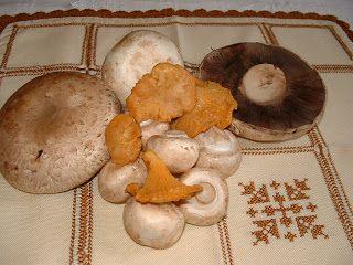 ΜΑΝΙΤΑΡΙΑ: Φθινοπωρινό...τραπέζι με μανιταρομαγειρέματα
