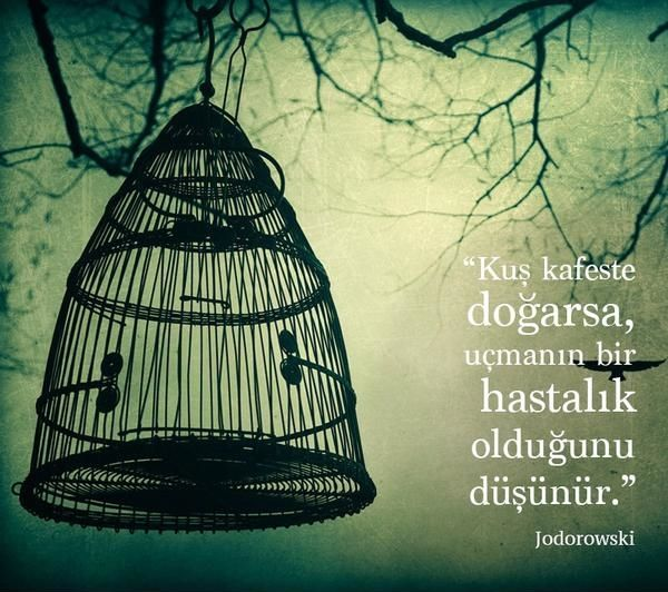 """""""Kuş kafeste doğarsa, uçmanın bir hastalık olduğunu düşünür."""" Jodorowski"""
