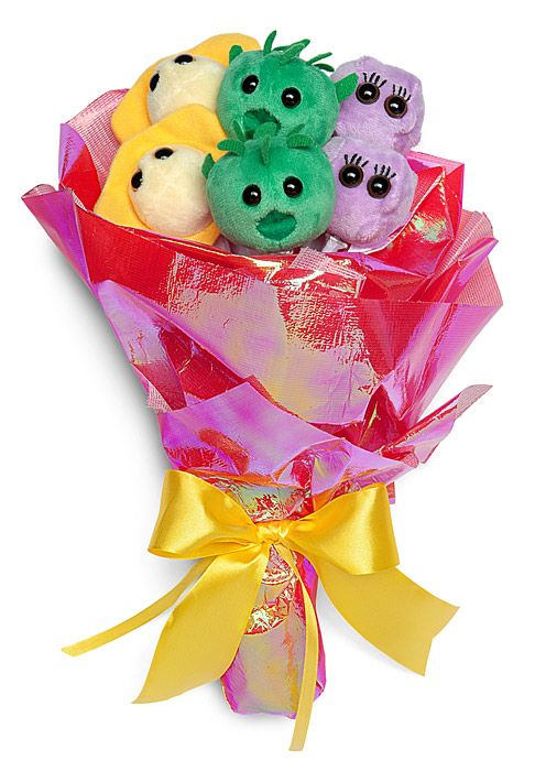 In each Plush Bouquet - Microbes of Love, you'll get six plush microbes: Chlamydia, Herpes, and Kissing Disease (2 each, so you can share). Awww.