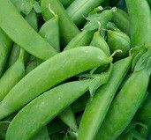 Sugar Snap Pea: 70 days.  This is the wonderfully sweet, edible-pod pea so popular with consumers and gardeners. Provide strong support for 6' vines. The delicious, tender pods are great raw (eaten before you ever leave the garden), stir-fried, or in salads. They also freeze very well.