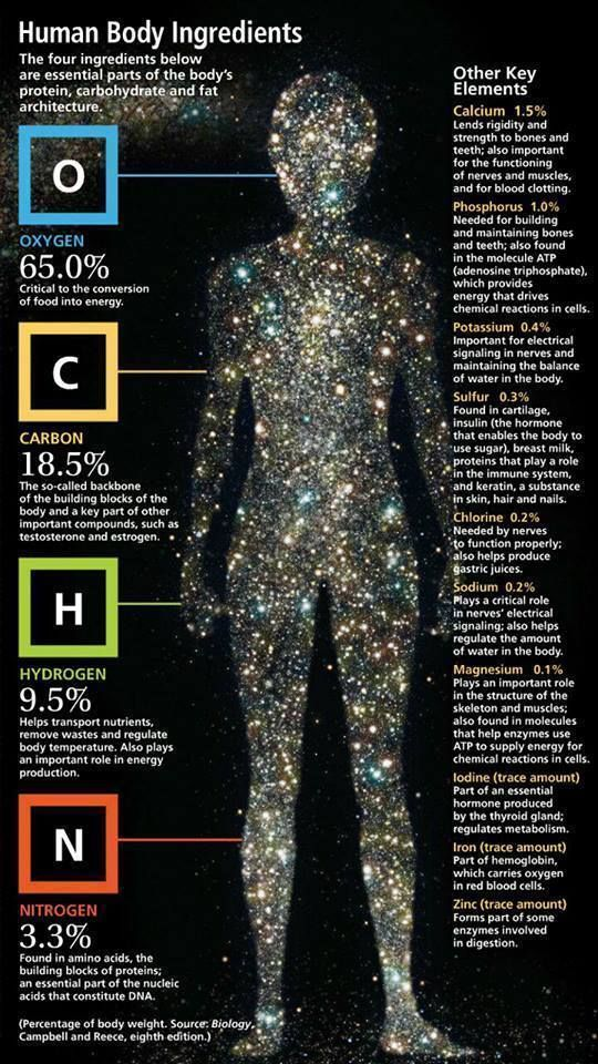 We are stardust. The average human has approximately 100 trillion cells and each cell is made up of approximately 100 trillion atoms each of which were originally created in the center of a star.