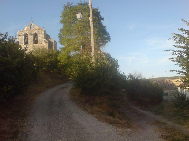 Cardeñuela Ríopico, Burgos, Camino de Santiago