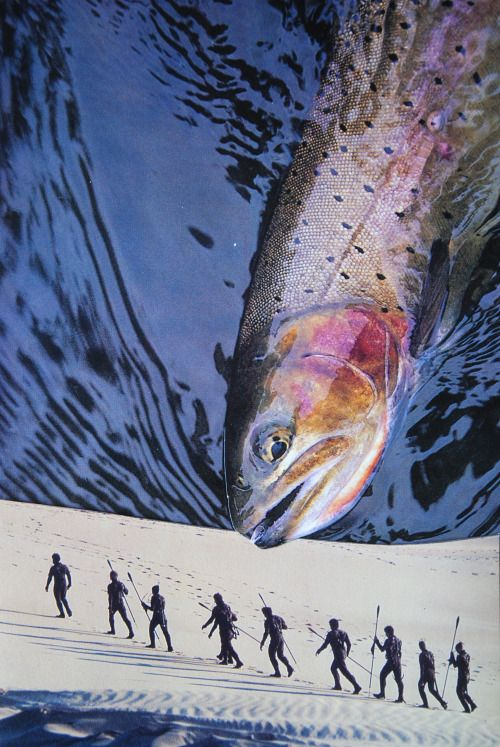 John Turck Collage Art...(There Are Plenty - Of - Fish - On The ..Singles Websites...!...)
