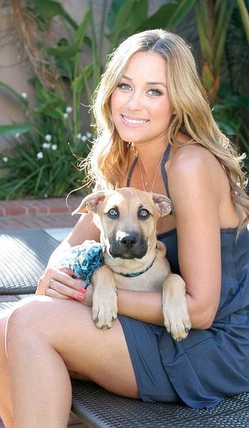 Lauren Conrad Rescue Dog