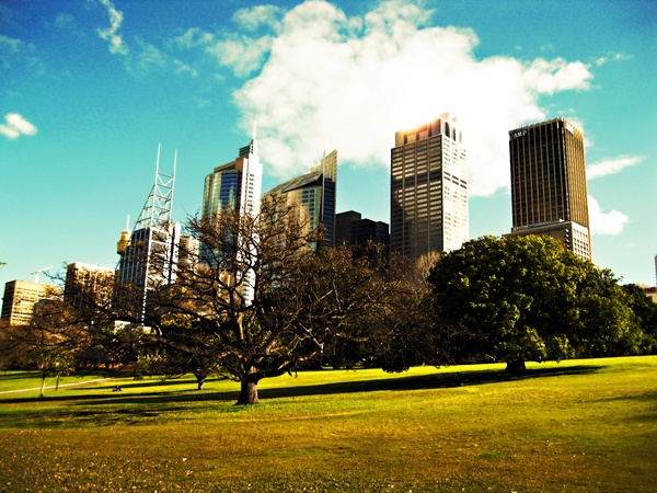 Sydney My Sydney by emre pehlevan, via Behance