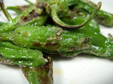 """A new food for me: shishito peppers. """"shishito peppers are the most delicious peppers ever in the history of peppers,"""" says some guy. So we will see. The recipe search begins!"""