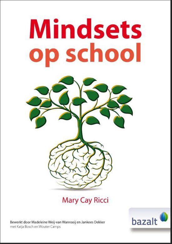 Samenvattende recensie van Mindsets op school