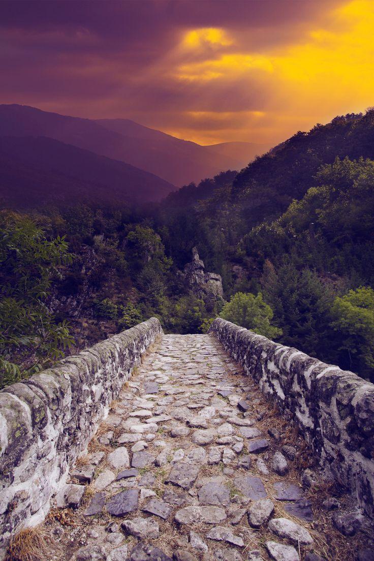 The bridge photo by klepher.tumblr.com