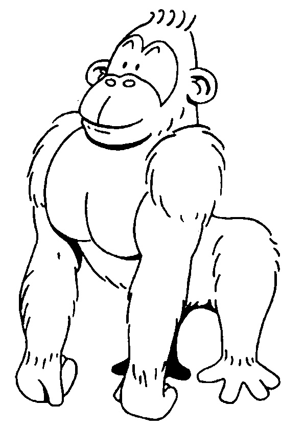 Smiling Gorilla Color Page Animal Coloring Pages For Kids Thousands Of Free Printable