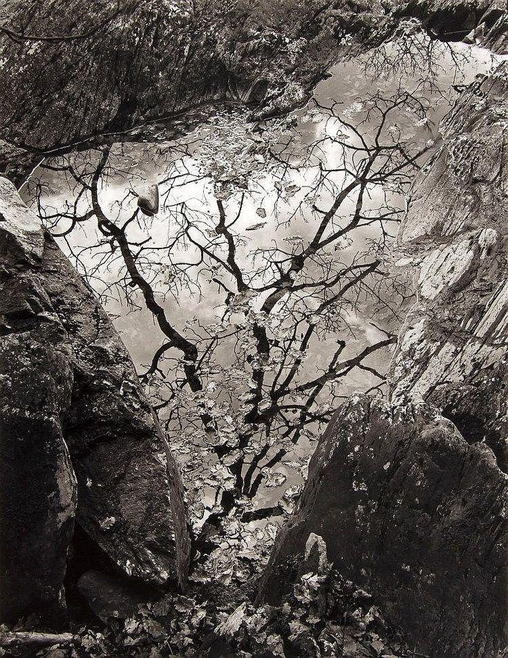 John Blakemore (b.1936) - Afon Gamlan, Wales, 1975 - by Dreweatts & Bloomsbury