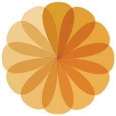 ORANGE FLOWER COMPANY LOGO