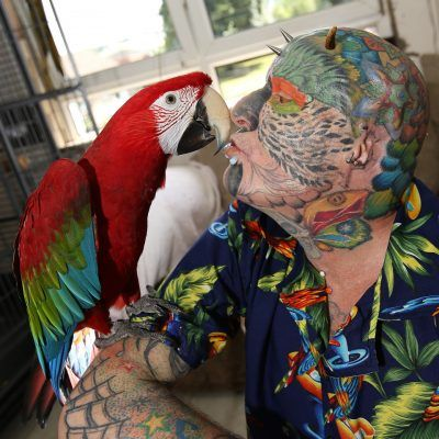 """To show his great love birds, Ted changed his surname to """"Parrotman"""", meaning """"man - parrot."""""""