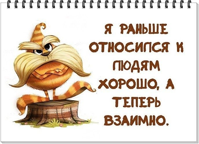 Фотоальбом Альбом группы Красиво сказано в Одноклассниках