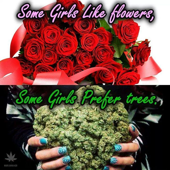 what type of flowers do girls like