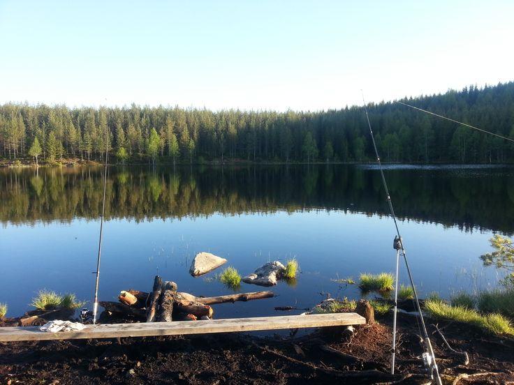 Vissen in Zweden op zalmforel.