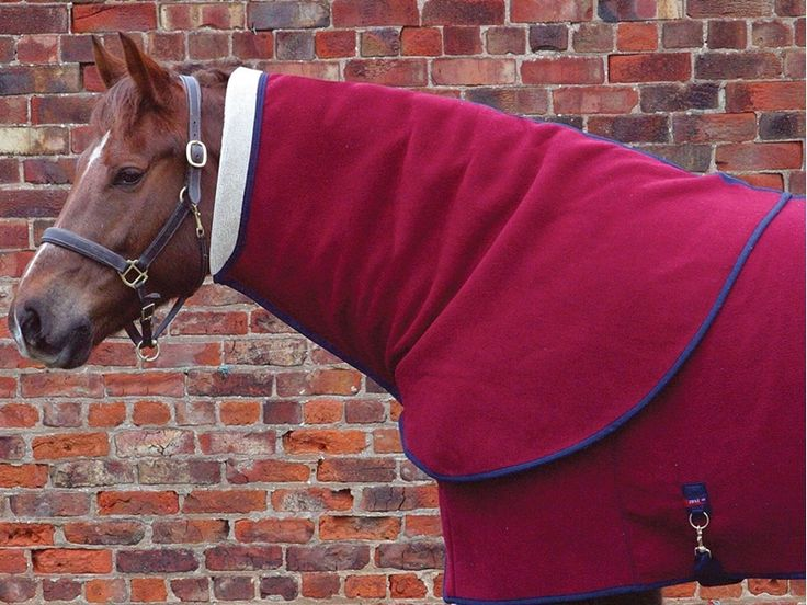 Comfort Zone Lapel Rug Neck Covers All Colours From Totally Tack Http