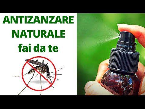 SPRAY ANTI ZANZARE NATURALE FAI DA TE - YouTube