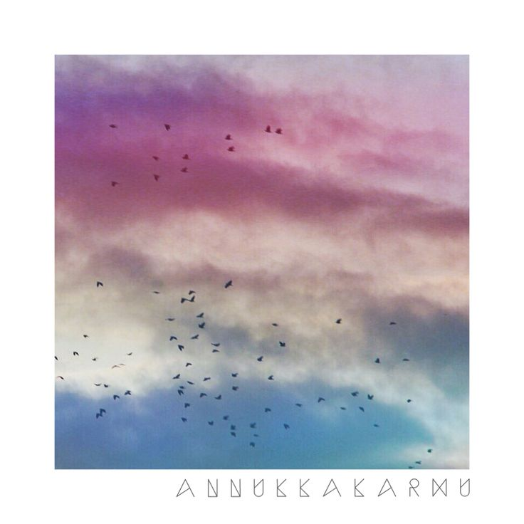 http://annukkakarhu.wix.com/annukar