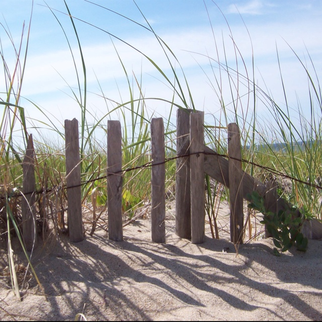 1000+ Images About Beach Fences On Pinterest