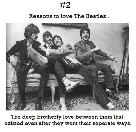 reasons to love the beatles   Tumblr (sepArate)