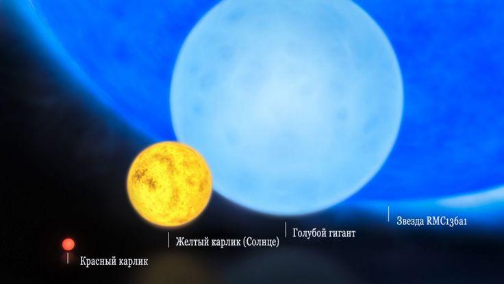 Красный карлик, звезда класса Солнца, голубой карлик и R136a1
