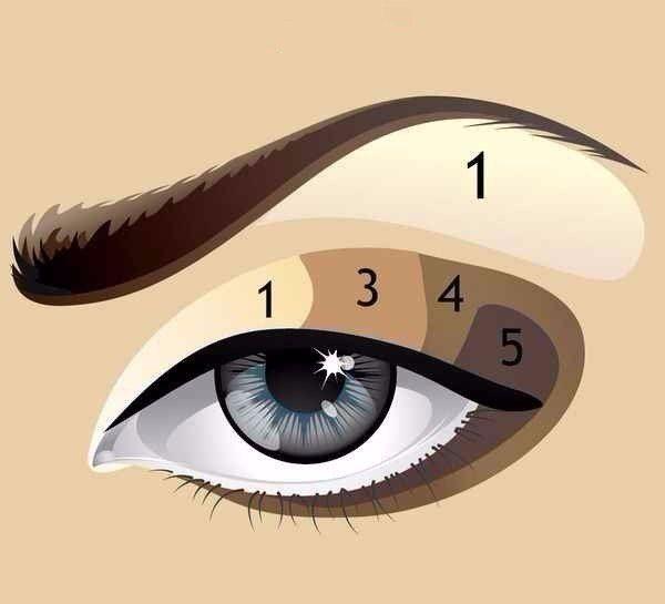 Схема макияжа лица | Макияж лица