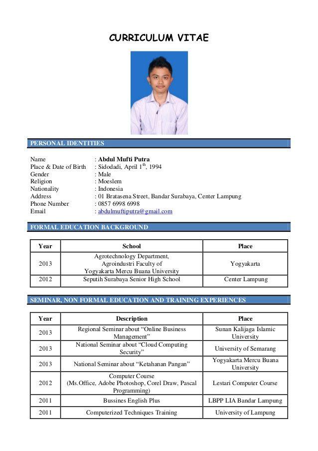 contoh curriculum vitae bahasa indonesia terbaru 2013