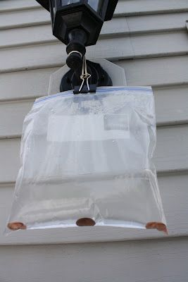 No Fly Zone- add pennies to a ziplock & hand near your picnic table to keep flies away