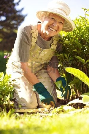 Portrait of happy senior woman planting new flowers in her garden