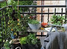 balkon inspiratie, inspiratie voor het inrichten van een klein en gezellig balkon #balkon #balcony #cozy_balcony #inspiratie #balkon_tuin