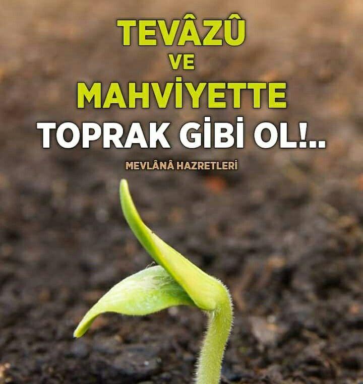 Tevâzû ve mahviyette toprak gibi ol.🌱  #toprak #mevlana #söz #alçakgönüllü #hzmevlana #sözler #mevlanacelaleddinrumi #mevlanahz #türkiye #hayırlıcumalar #istanbul #ilmisuffa
