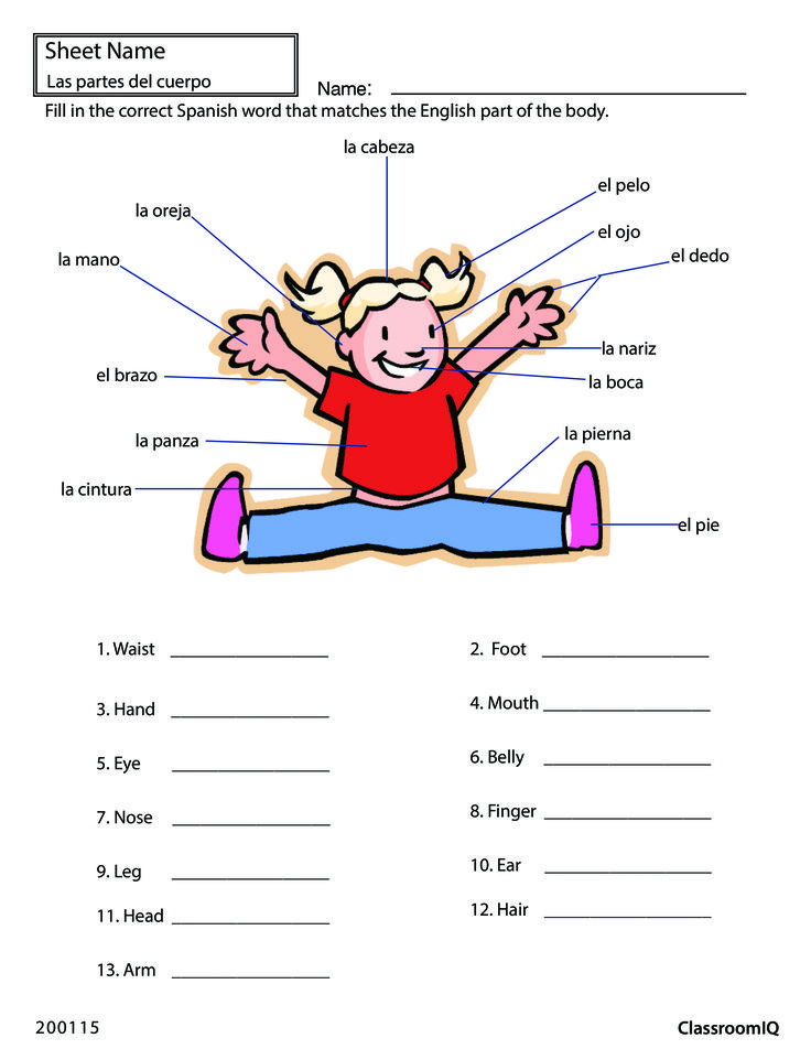 body parts in spanish spanishworksheets classroomiq. Black Bedroom Furniture Sets. Home Design Ideas