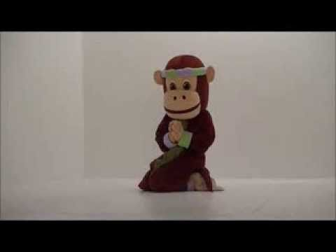 ▶ PedaYOGA Canard / Duck posture with Namaste - YouTube
