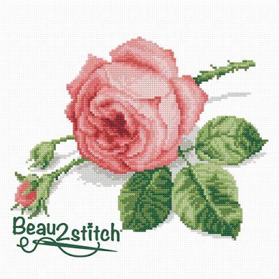 Pink Rose (FREE CHART)