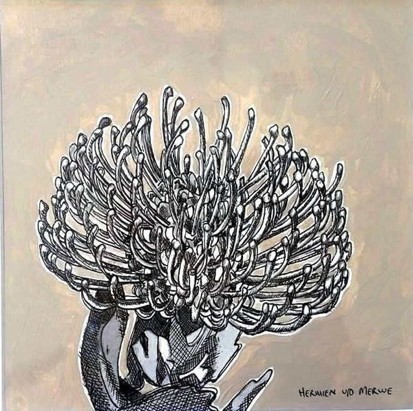Hermien Van Der Merwe; Title: Fynbos:  Table Mountain Fynbos 16 Medium: Pen-and-Ink drawing on paper with oil paint background Size: 200 x 200mm