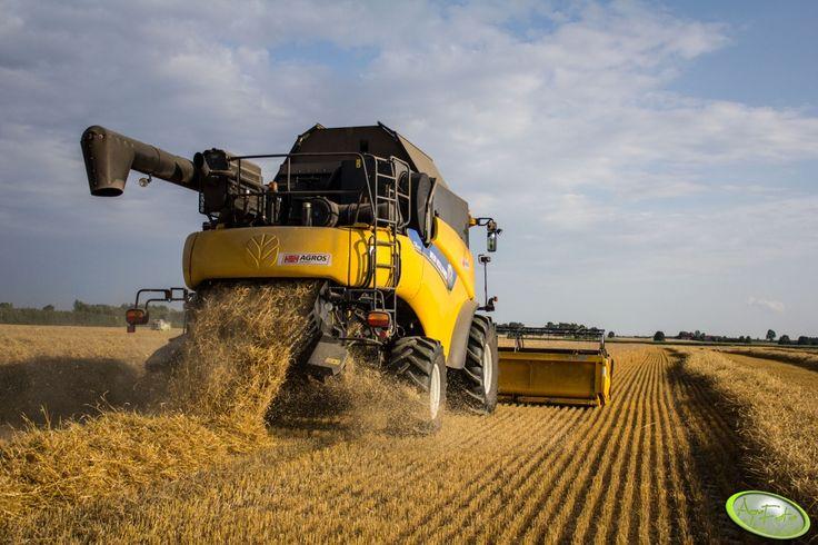 Żniwa w pełni. #newholland #harvester