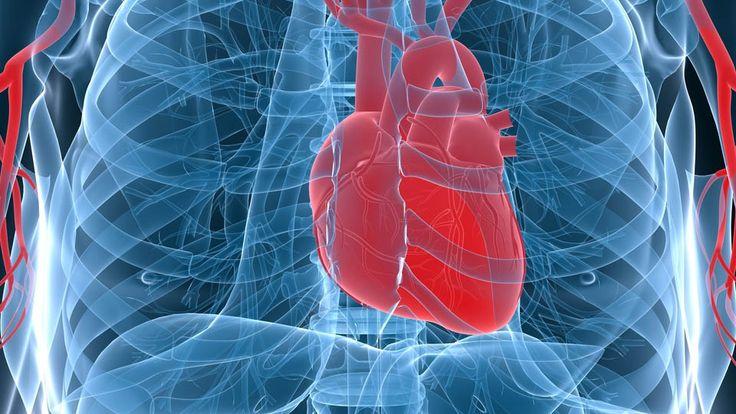 Cela peut paraître surprenant pour certains, en particuliers ceux qui ont une formation médicale conventionnelle, mais l'état du corps par défaut est celui de régénération continuelle. Sans ce processus qui, tel une flamme, renouvelle constamment les cellules dans le corps, – la vie et la mort sans cesse entremêlées – le miracle du corps humain …